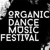 Organic dance music festival