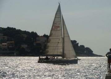 Sailing trips - daily, half-day and short trips