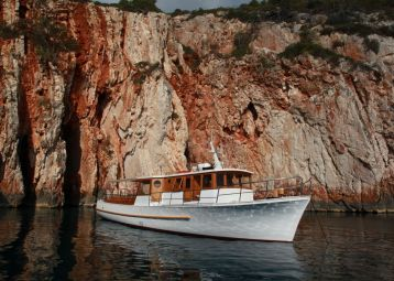 Delfina Excursion - Hvar
