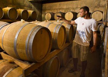 Wine tasting tour, Zlatan otok, Sv. Nedjelja